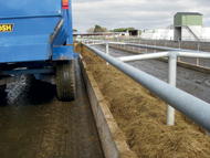 Feeding round bales into troughs